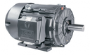 [GR3-AL-TF-213T-4-B-D-7.5] 213T Cast Iron Pump Motor (1800 RPM, 7.5 HP)
