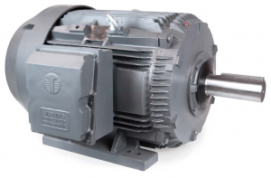 449T Crusher Duty Motor (1800 RPM, 300 HP)