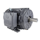 [BL3-CI-TF-449T-4-BR-E-300] 449T High Efficiency Motor (1800 RPM, 300 HP)