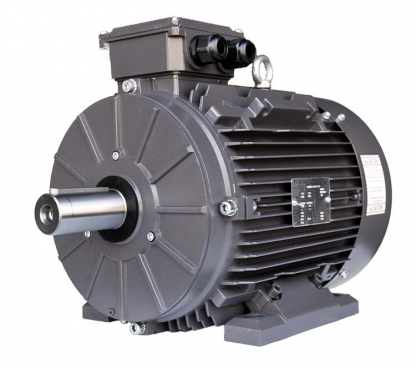 112MB3 Metric IEC Motor (3600 RPM, 7.5 HP)