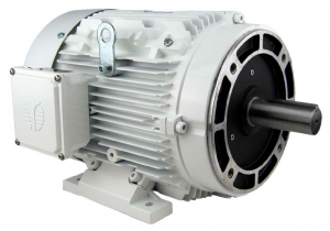 213TC Washdown Duty Electric Motor (3600 RPM, 7.5 HP)